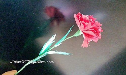 입체 카네이션꽃 만들기 : 네이버 블로그