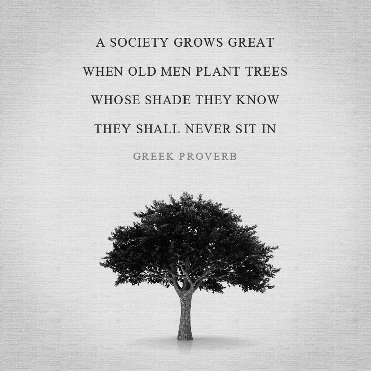 Plant Trees Under Whose Shade Quote : Men plant trees whose shade they know shall never sit in plants