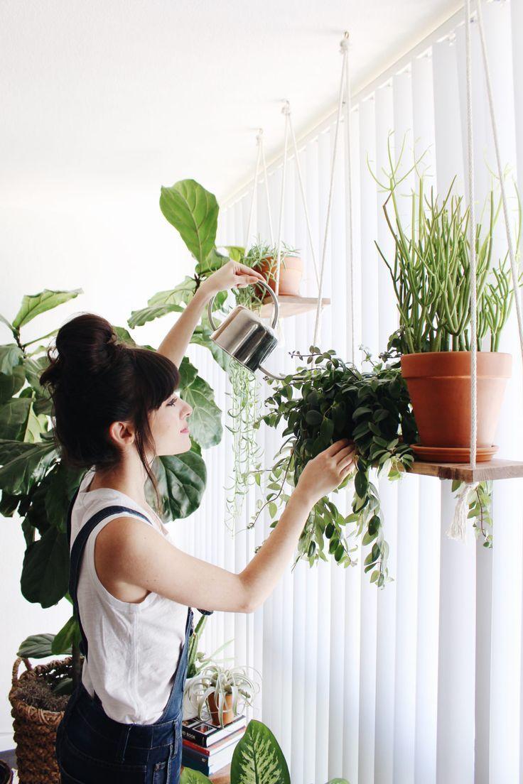 Best 20 hanging plants ideas on pinterest - Indoor plant for bedroom ...