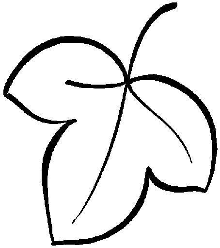 17 best images about moldes hojas on pinterest leaf for Arboles de hoja caduca