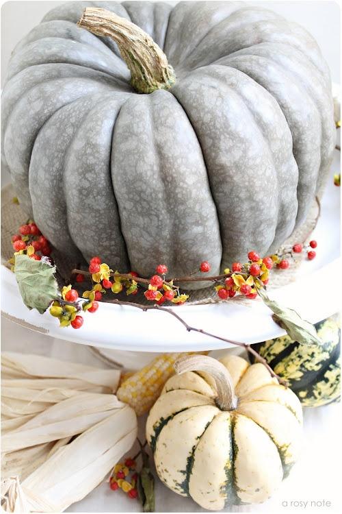 Every Cinderella pumpkin should be on a pedestal !