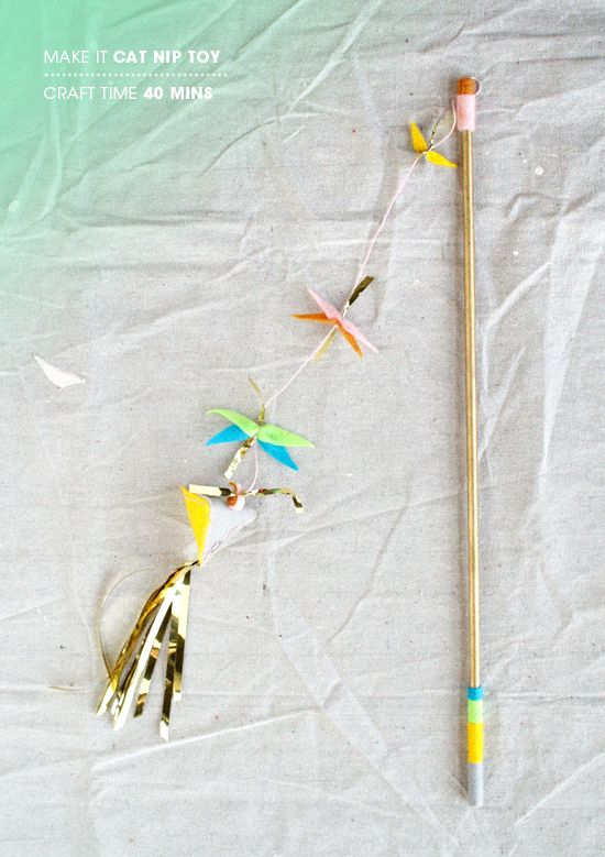 102 Best Images About Diy Homemade Cat Toys On Pinterest