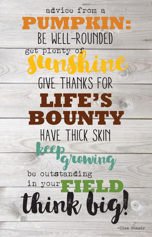 Advice from a Pumpkin!                                                                                                                                                                                 More