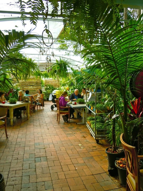 The Conscious Cafe - Byron Bay