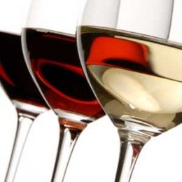 Types of wine glasses – Buy the right wine glass