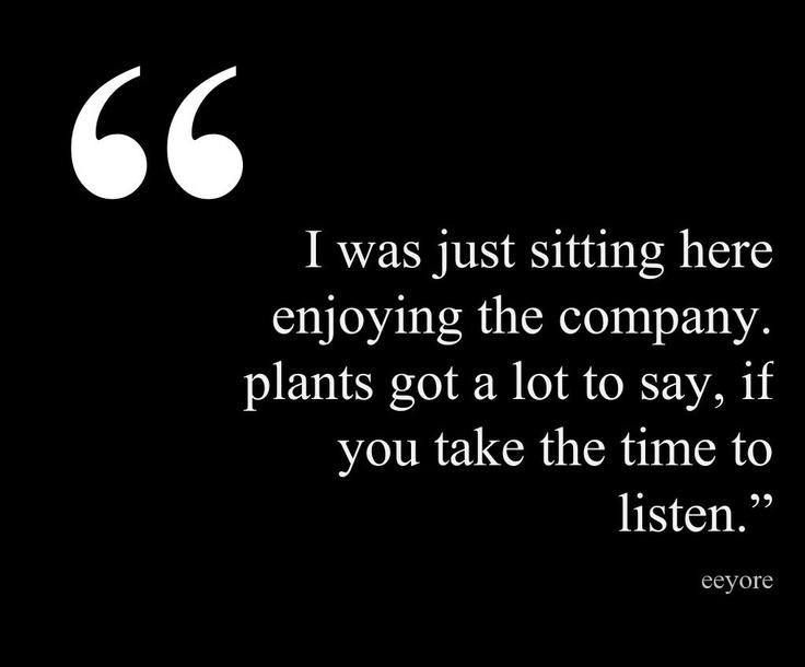 Garden quote courtesy of @Pinstamatic (http://pinstamatic.com)
