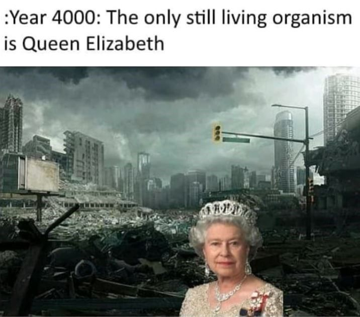 Fourteen Queen Elizabeth Memes That Will Never Die Queen Elizabeth Memes Stupid Funny Memes Funny Memes