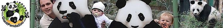 www.GiantPandaZoo.com - Website about giant pandas in captivity