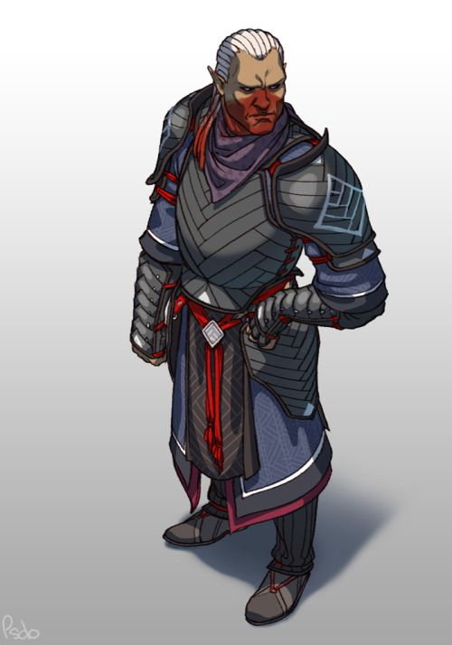 It would be so kool for Sten to have a special Qunari heavy armour set found specifically for him in Origins :-)