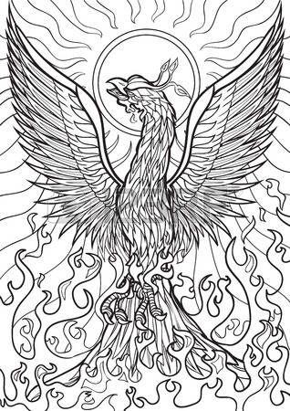 bildergebnis für phoenix fire black and white   vogel