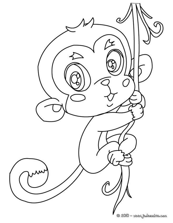Coloriage d'un bébé singe