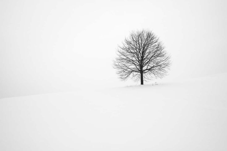 55 Beautiful Winter Wallpapers all About Snow, Frost, and Ice iPhone X Wallpaper 142215300720808017
