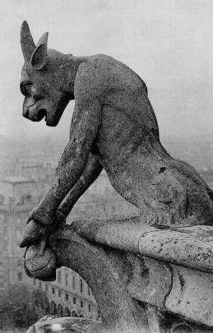 Gargoyles on gothic architecture is awesome.
