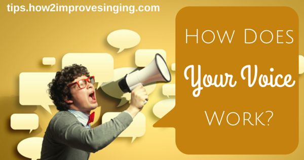 Click here to see how your voice works: http://tips.how2improvesinging.com/how-does-your-voice-work/