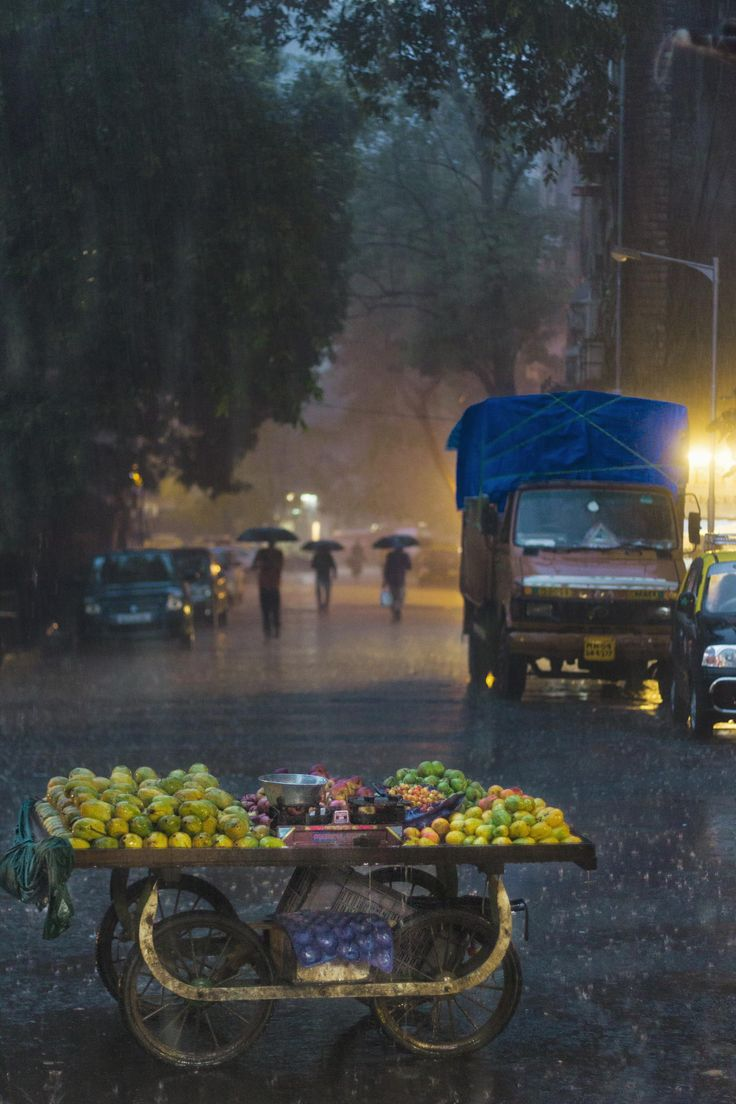 576019917eb845823d8f768f2ff4fcd3  the fruit curry leaves - The Fruit Cart | Monsoon in Bombay by Aneel Neupane on 500px