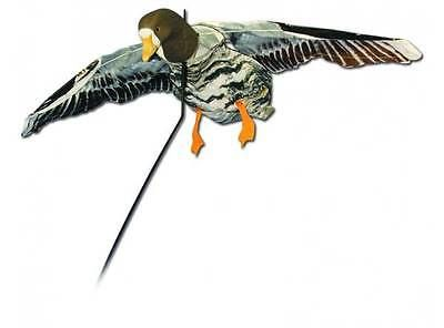 Decoys 36249: Deadly Decoy Specklebelly Goose Flyer, Nip -> BUY IT NOW ONLY: $47.95 on eBay!