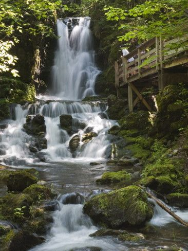 Dickson Falls in Fundy National Park, New Brunswick, Canada, North America Photographic Print