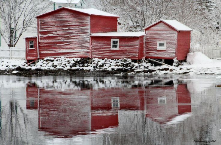 Conception Harbour Newfoundland Canada After a night of Driving snow and sleet