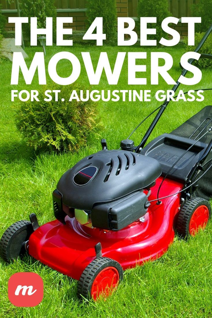 The 4 Best Mowers For St Augustine Grass Mower Grass Lawn Care Weeds