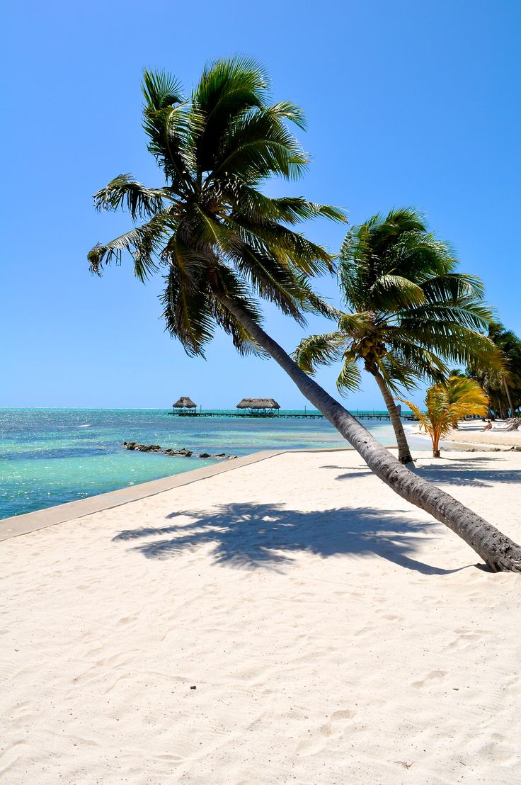Amazing Places — San Pedro Town - Belize (by- Adam Reeder -)