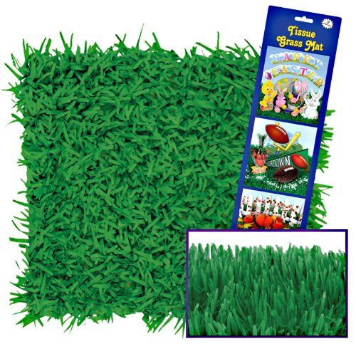 Green Grass Tissue Mats Party Accessory...blog on party.   Great ideas for a Minecraft party