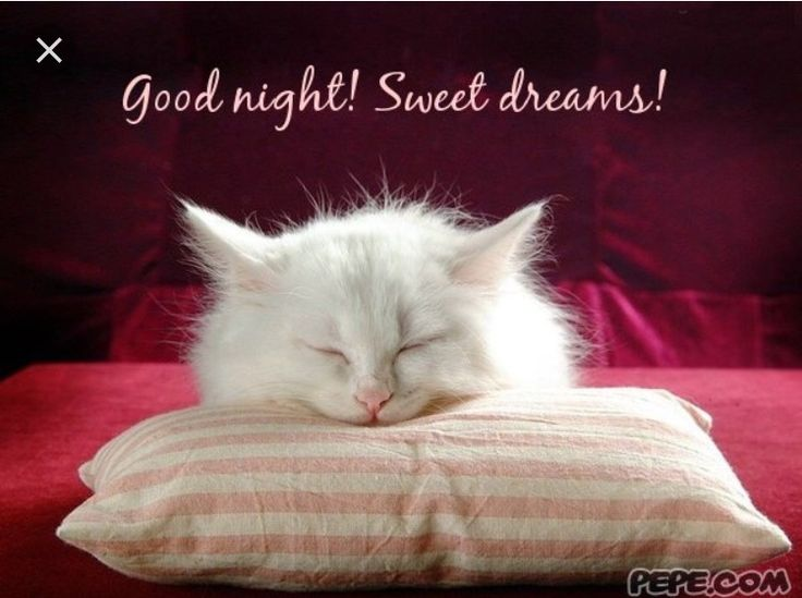 Image result for good night my all sweet friends