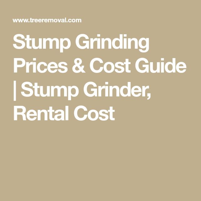 Stump Grinding Prices & Cost Guide | Stump Grinder, Rental Cost