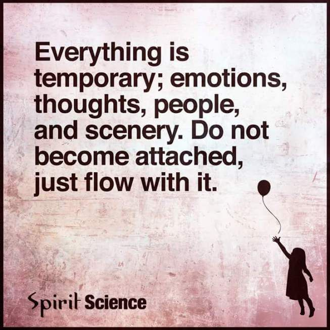 Everything is temporary; emotions, thoughts, people and scenery. Do not become attached, just flow with it