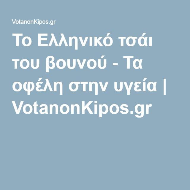Το Ελληνικό τσάι του βουνού - Τα οφέλη στην υγεία | VotanonKipos.gr
