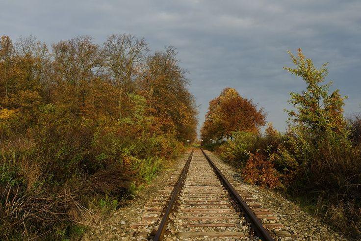 Podzim u kolejí
