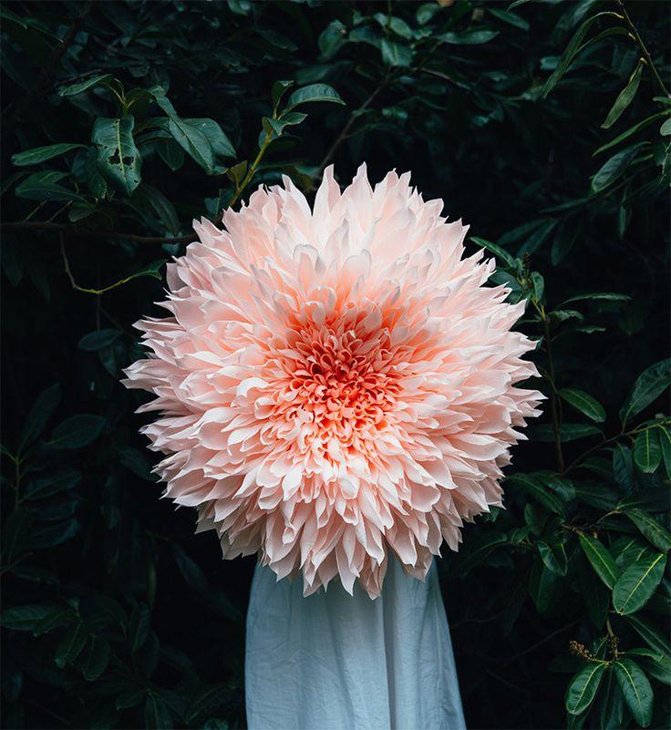 гигантские цветы делает художник и архитектор Тиффани Тернер. Делает их из гофрированной бумаги, на один цветок уходит до 80 часов
