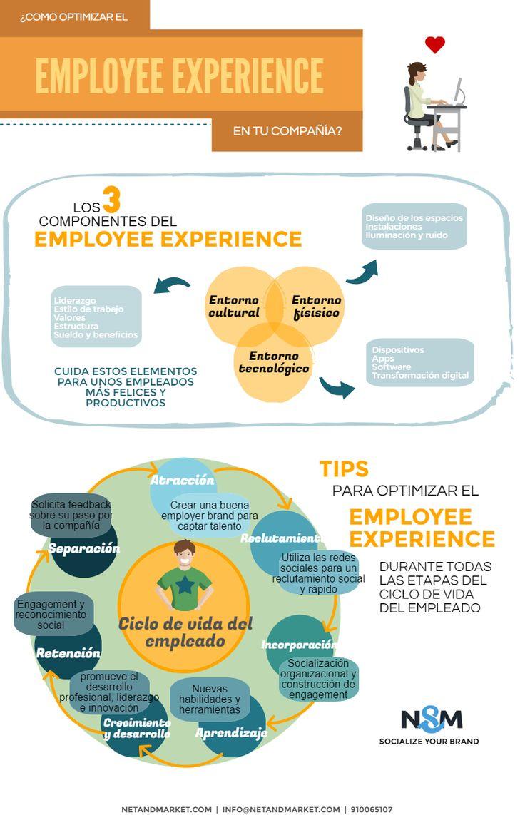 ¿Cómo optimizar el employee experience en tu compañía?