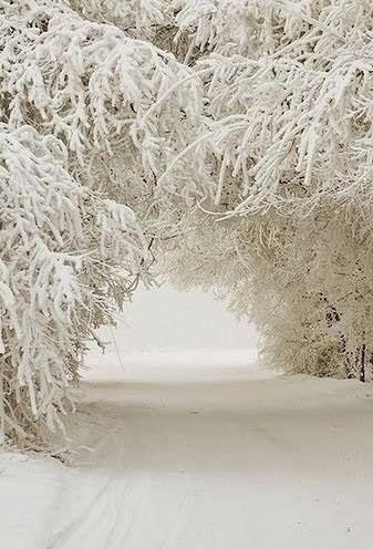 zimowo śniegowo