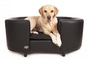 GUIDE: Find de hundesenge der passer til din hunds størrelse!  #guide #hunde #hundesofa #hvalpe