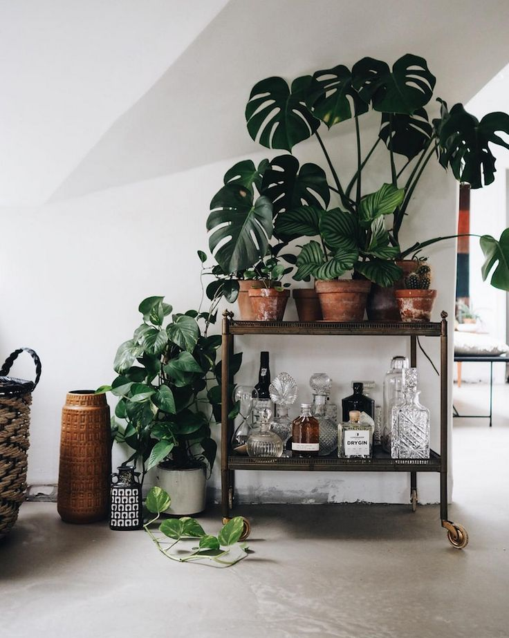 my scandinavian home: A Cosy Danish Loft Full of Plants & Vintage Treasures