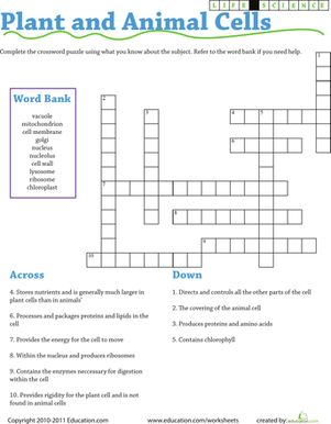 Life Science Crossword: Plant and Animal Cells