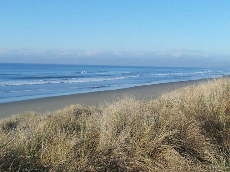 Pegasus Bay Beach. Canterbury, NZ