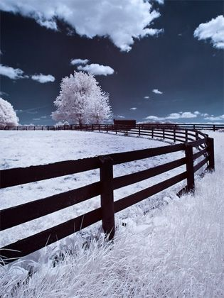 INFRARED PHOTOGRAPHY: TIPS ON HOW TO GET STARTED