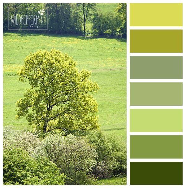 #Farbpalette, Farbinspiration, #grün, #grüntöne