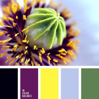 amarillo neón, amarillo vivo, amarillo y violeta, color casi negro, color gris azulado, color púrpura, de color púrpura, elección del color, elección del color para la decoración, negro y amarillo, negro y violeta, verde, verde apagado, verde y amarillo.
