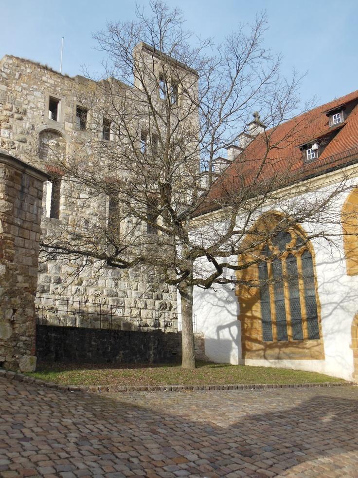 Baum, Heidenheim, Schloss Hellenstein