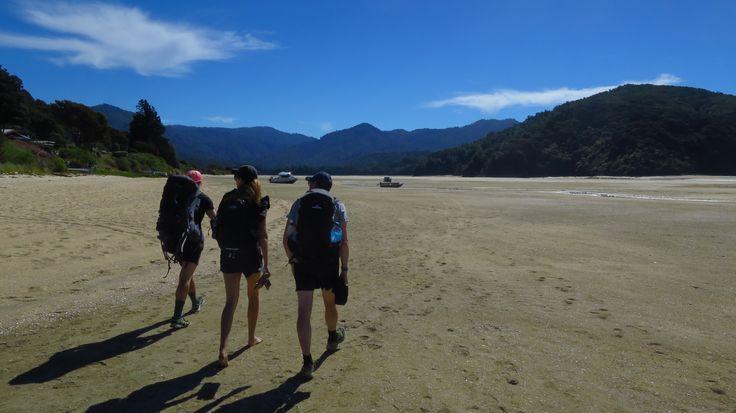 Awaroa Estuary Abel Tasman National Park