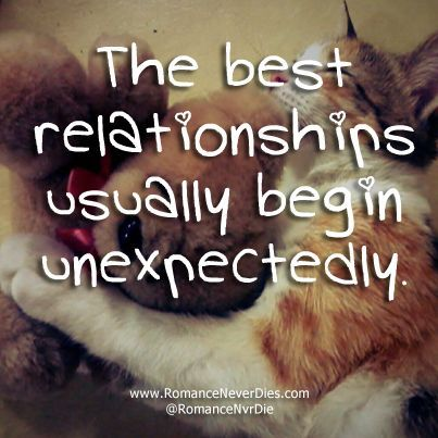 quotes about love and relationships | ... hate. These kind of unexpected relationships are usually the best