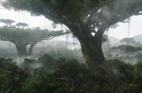 thank you james cameron : wish i could see an avatar home tree