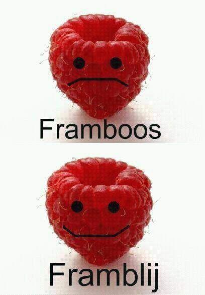 FramBOOS en FramBLIJ