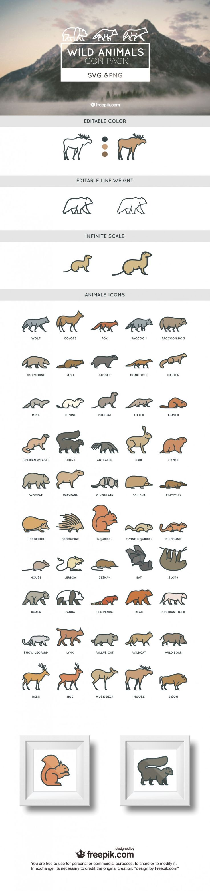 best animales images by nata on pinterest