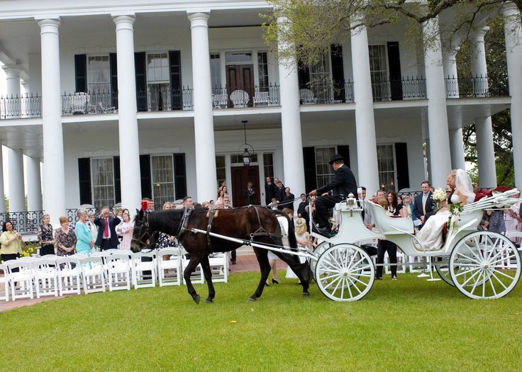 From Antebellum Mansions To Historic Settings Lush Flora And Fauna Natchez Mississippi Weddings Are Unforgettable