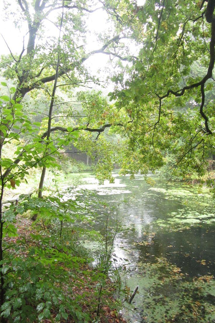 Lake at Steile Oever, Eerde