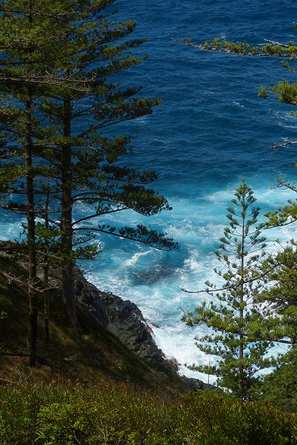 Blue!  Norfolk Island, Australia