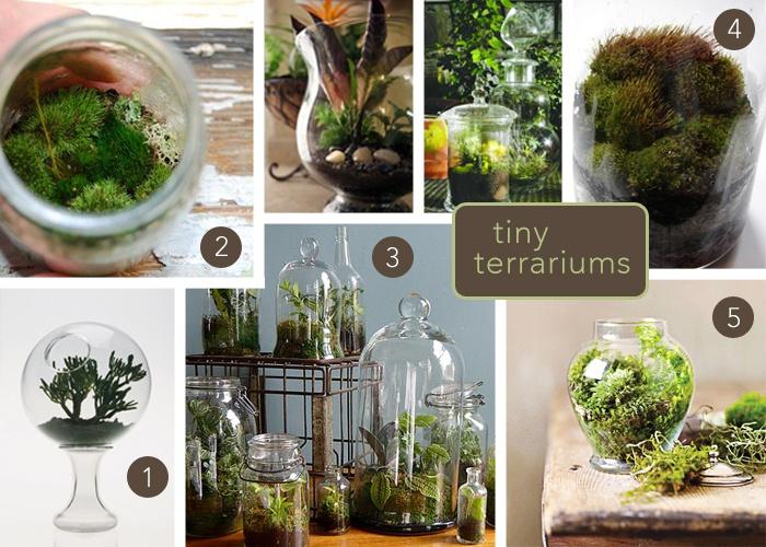 17 Best Ideas About Terrarium Wedding Favor On Pinterest Terrarium Wedding Succulent Wedding